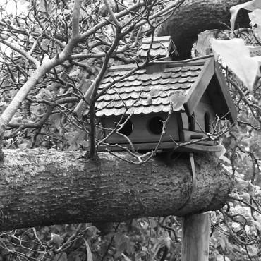 casa - capanna sull'albero
